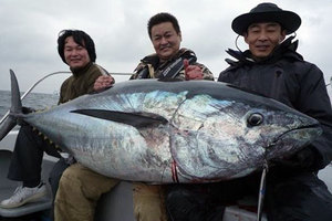 Tuna118kg