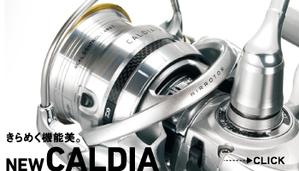 Bcaldia