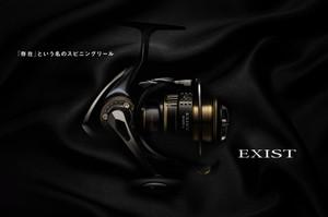 Exist_2