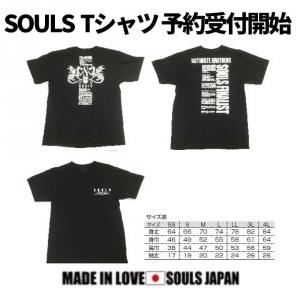 Soulst20200325